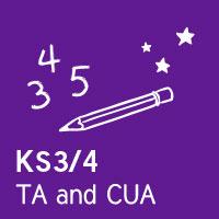 Teacher Adviser and Customer Understanding Assistant KS3/4