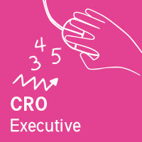 Conversion Rate Optimisation Executive